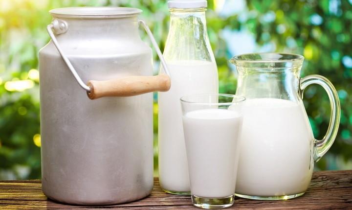 Реферат как скисает молоко 9065