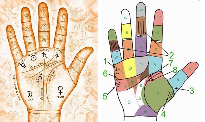 Что можно понять по своей руке