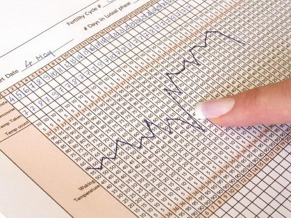 определение беременности без теста по базальной температуре