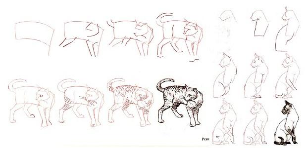 Как нарисовать кошку в профиль