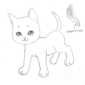 Рисуем кошку поэтапно 4